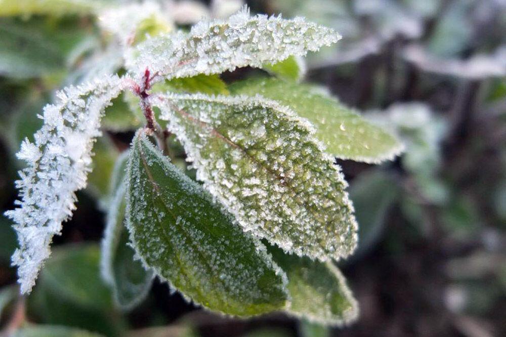 خبرنگاران هواشناسی کردستان در مورد کاهش دمای استان اخطاریه صادر کرد