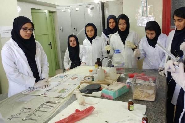 زیست بوم فناوری و نوآوری سلول های بنیادی جوان تر می شود ، راه اندازی پژوهش سرا های دانش آموزی، به زودی