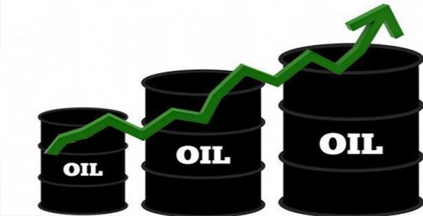 قیمت نفت صعودی شد
