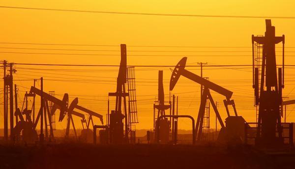 چرا نفت گران شد؟