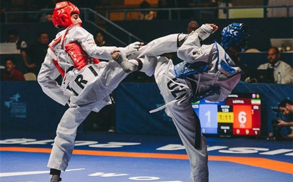 برای حضور در المپیک توکیو؛ ترکیب تیم ملی تکواندو ایران اعلام شد
