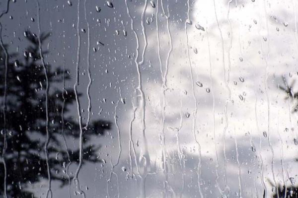 ادامه بارش های پراکنده و وزش باد در بعضی مناطق